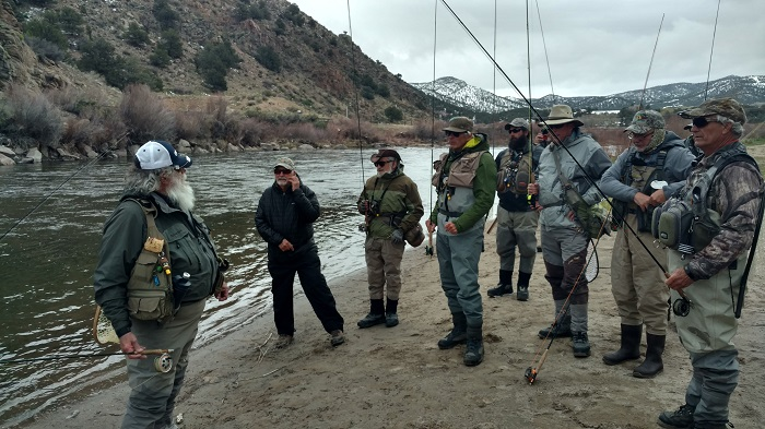 larry-on-stream