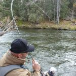 manfred-a-phw-alaska-participant-fights-a-rainbow-on-the-russian-river-and-nick-the-guide-readies-to-land-it