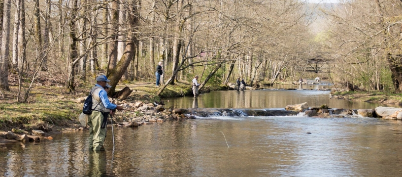 Tennessee valley project healing waters fly fishing for Healing waters fly fishing