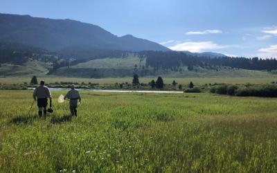 """The best one yet"" – PHWFF Casper ventures to West Yellowstone"