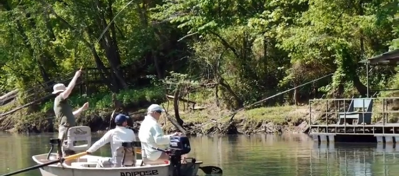 Project Healing Waters & The Arkansas Fly Fishers 2018 (VIDEO)