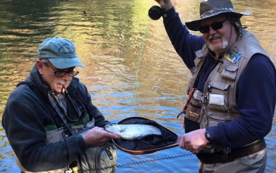 PHWFF veterans and volunteers invade North Georgia (and a good time was had by all!)