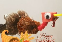 The Thanksgiving Turkey Fly by SPC (ret) Aaron Heusinkveld, Army National Guard (VIDEO)