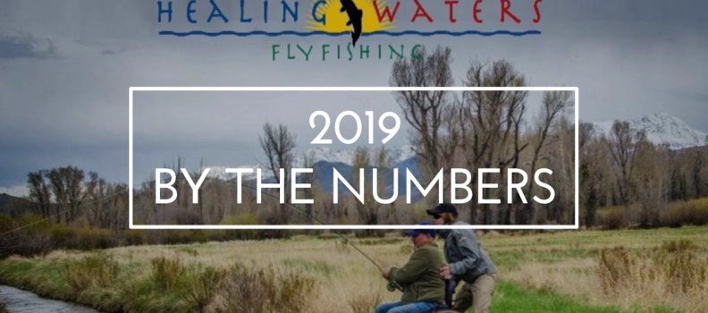 Casting a Lifeline: 2019 by the Numbers