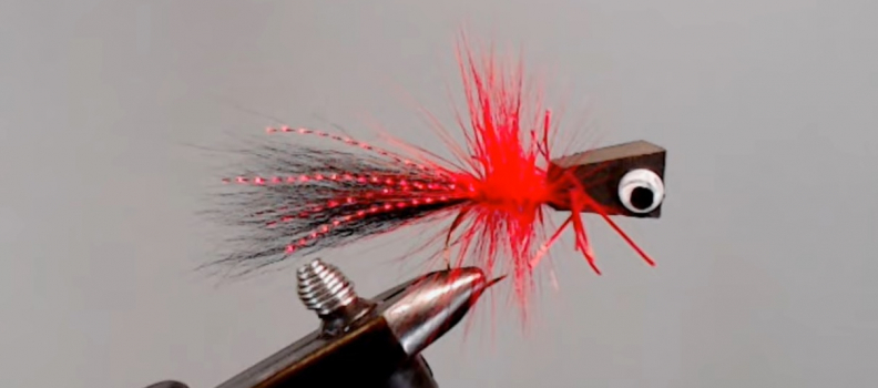 St. Cloud Program to Host Fly Tying Classes on YouTube Live
