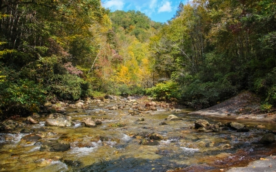 PHWFF Programs team up to fish Wilson Creek in Brown Mountain, NC (VIDEO)