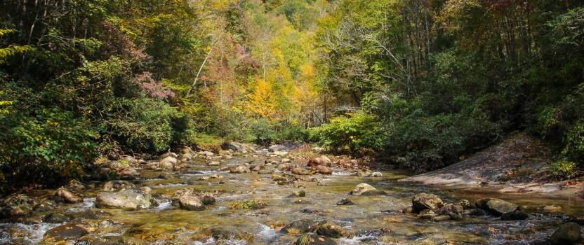PHWFF Programs team up to fish Wilson Creek in Brown Mountain, NC (VIDEO)